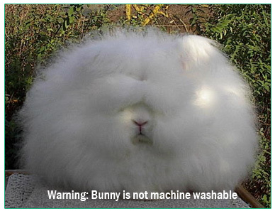 Warning Bunnies are not