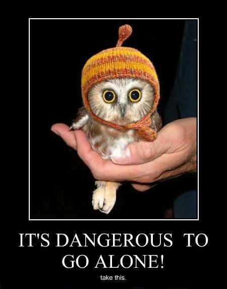 its-dangerous-to-go-alone.jpg